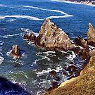 Dizzying heights--Newport Oregon by Nancy Richard