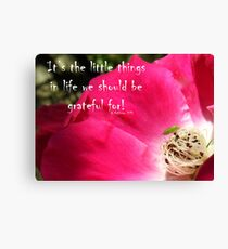 It's the Little Things.. Canvas Print