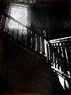 The Ascent ~ West Park Asylum by Josephine Pugh
