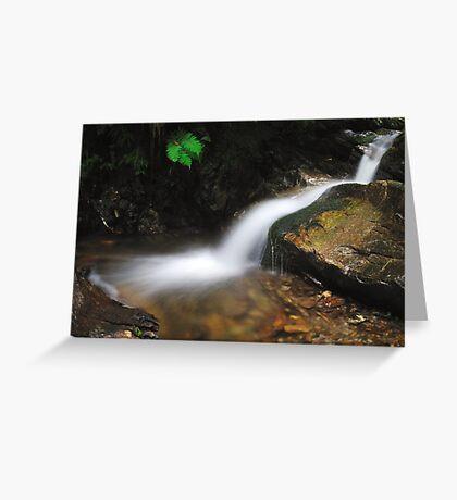 Torrent, Liro Valley II Greeting Card