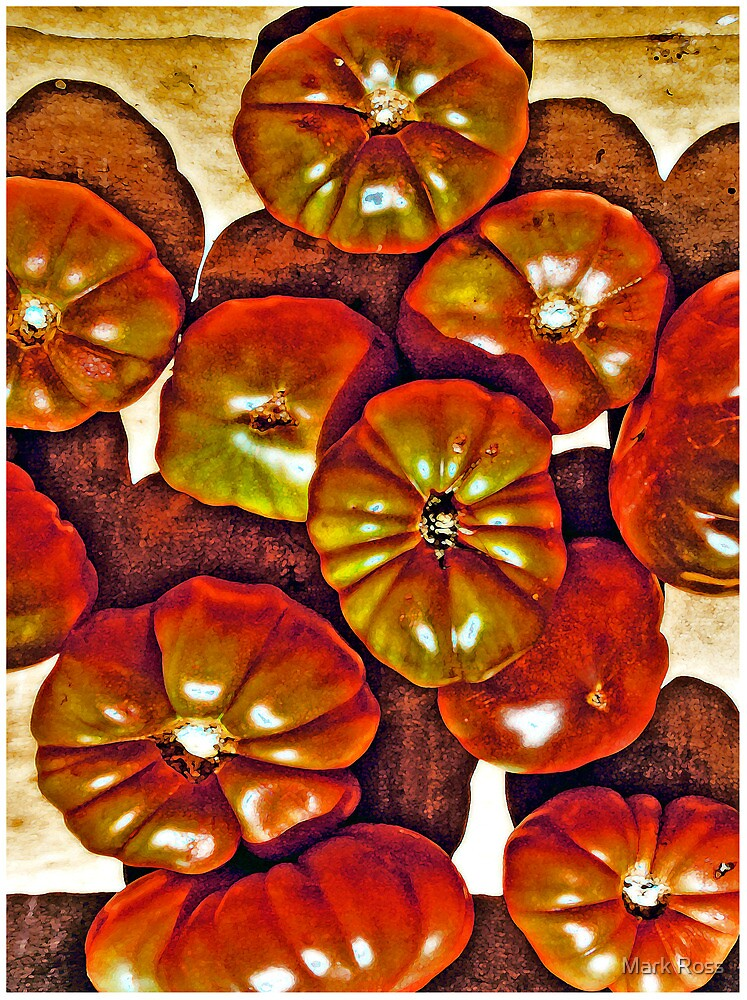 Delicious Tomatoes! by Mark Ross