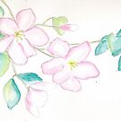 Apple Blossoms by auroralee1013