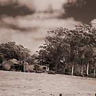 Farm House at Youngs Siding by BigAndRed