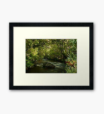 Pencil Pine Creek, Cradle Mountain Framed Print