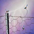 Defying Electrifying by John  Murray