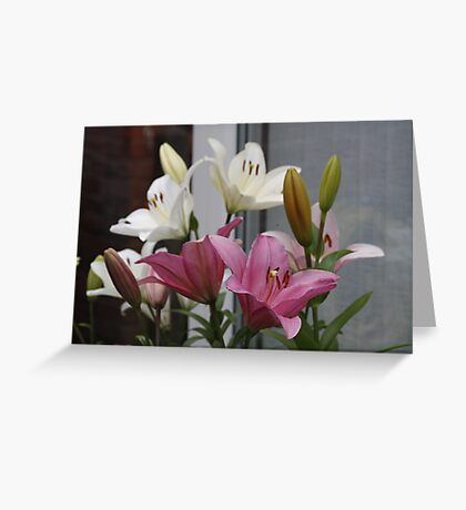 Lily Collection Greeting Card