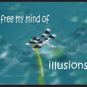 Dragonfly Illusions by CCWriter