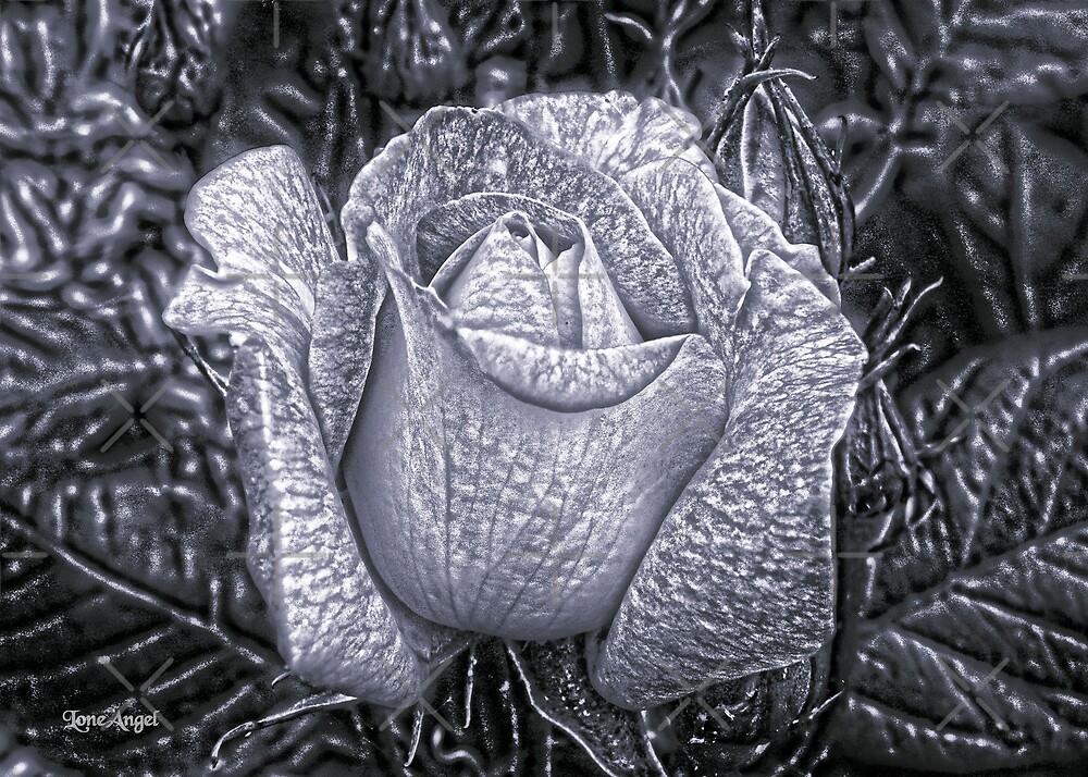 Metal Rose by LoneAngel