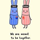 Salt and Pepper Rabbit by Rowehon