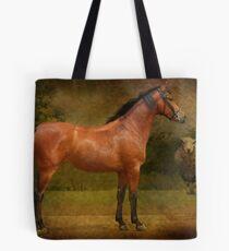The  Race Horse. (TB X Polish Warmblood ) Tote Bag