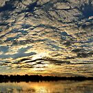 Okavango Delta Sunset - Botswana #2 by Sharon Bishop