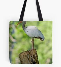 On Lookout Tote Bag