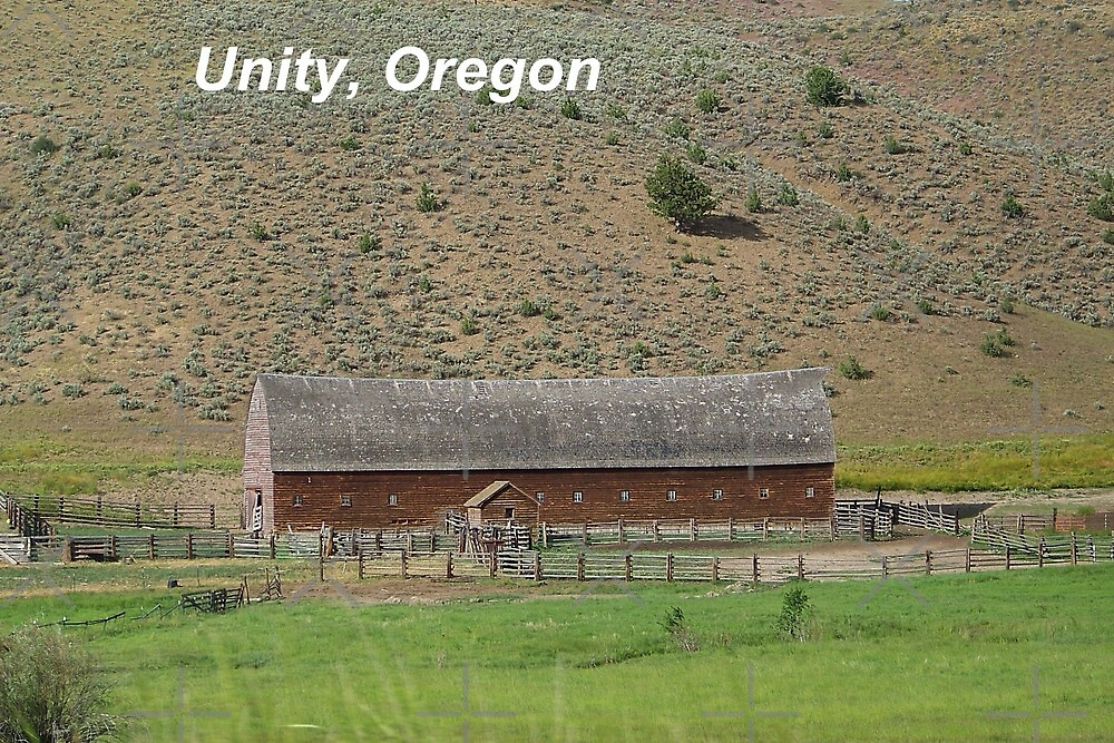 Old Cattle Barn - Unity, Oregon by Betty  Town Duncan