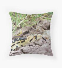Great Basin Gopher Snake Throw Pillow