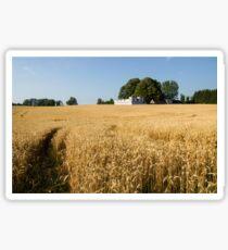 A Path in the Golden Wheat Field Sticker