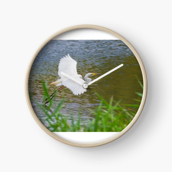 Great Eastern Egret Skimming Clock