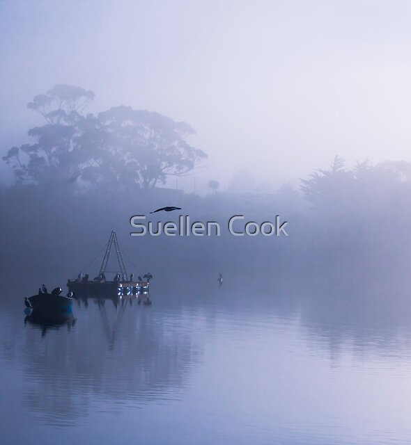 Flight cancelled due to fog by Suellen Cook