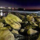 Bronti on the Rocks by donnnnnny