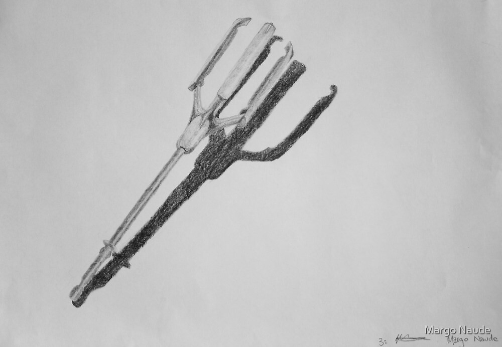 still life - kitchen utensil by Margo Naude
