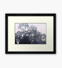 The mysteries of the morning mist Framed Print
