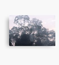 The mysteries of the morning mist Canvas Print