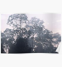 The mysteries of the morning mist Poster