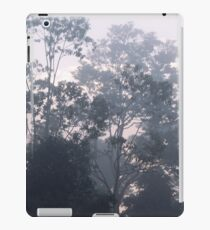 The mysteries of the morning mist iPad Case/Skin