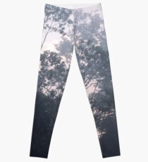The mysteries of the morning mist Leggings