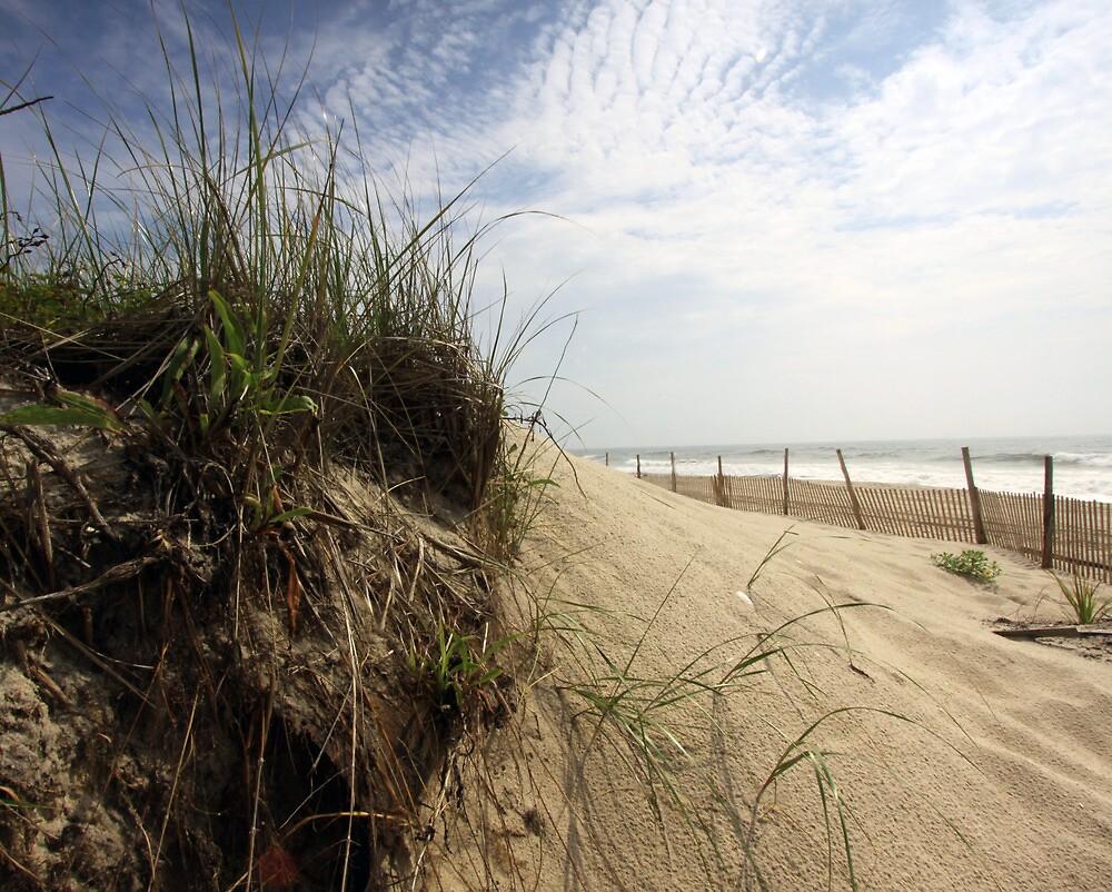 Long Beach Island, New Jersey by Edward Mahala