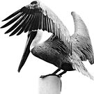 Perched Pelican on a Post, Grayscale by BluEartharts