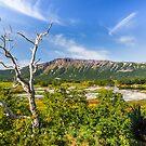 Caldera of volcano Uzon, Kamchatka by Svetlana Korneliuk