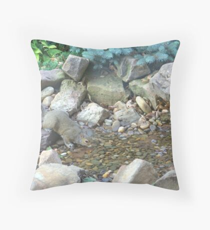 Fountain Drink Throw Pillow