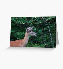 Deer Lady....! Greeting Card