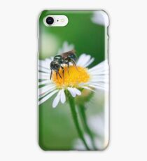 Insect Buffet iPhone Case/Skin
