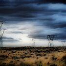 Desert Road. by Lynne Haselden