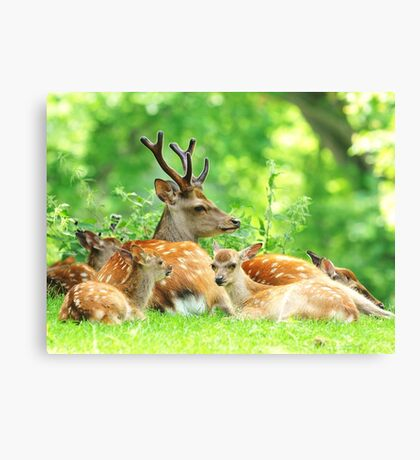 The family outing Canvas Print