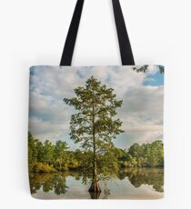 Bald Cypress in the Morning Tote Bag