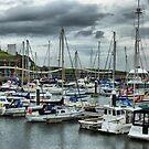 Whitehaven Marina  by Lilian Marshall