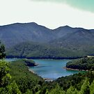 Lake Avalanche - Ooty by clarebearhh