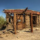 California Ghost Town by Terence Russell