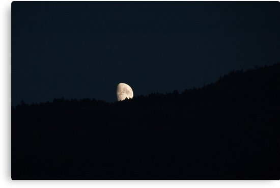 Moon peering over the hillside, Bolzano/Bozen, Italy by L Lee McIntyre