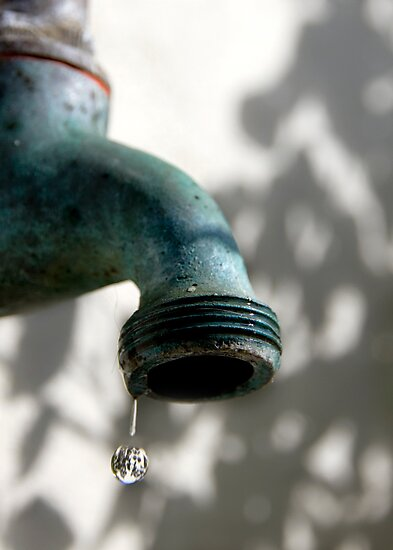 Use Water Wisely by Judith Cahill