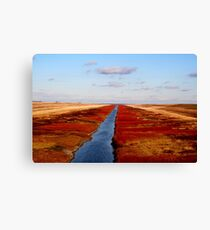Red River Floodway Canvas Print