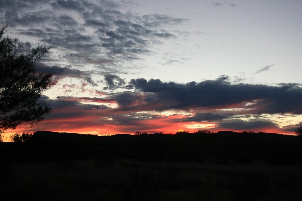 Dawn at Kings Canyon by Sarah Harris