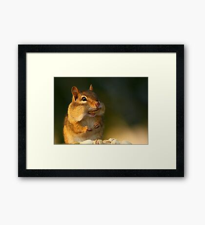 Just call me Ray! Framed Print