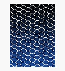 Blue and Black Scales Photographic Print
