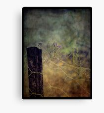 Holding Up Canvas Print