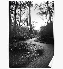 Path to Greenfields Beach ~ Jervis Bay Poster