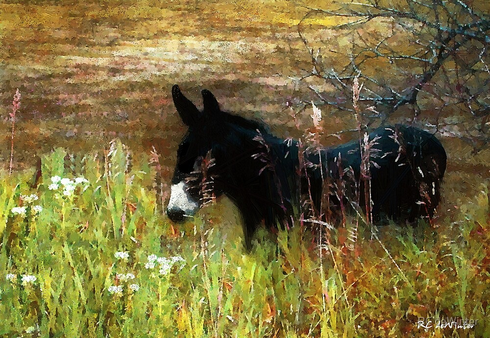 Just Chillin' by RC deWinter