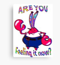 Are you feeling it now Mr Krabs? Canvas Print